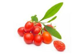 Benefits of goji berries for healthy