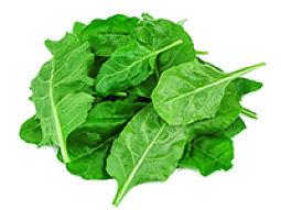 Spinach Leaf Powder