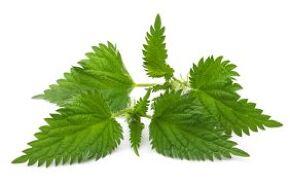 SkinnyFit fit detox with nettle leaf