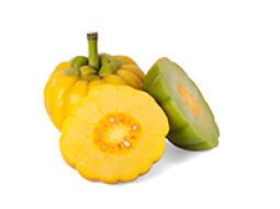 Garcinia cambogia for suppressing appetite
